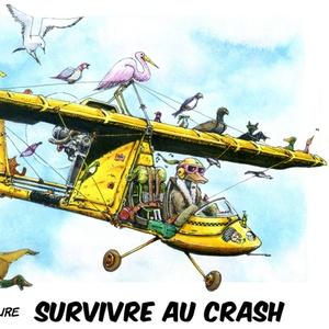 Survivre au crash